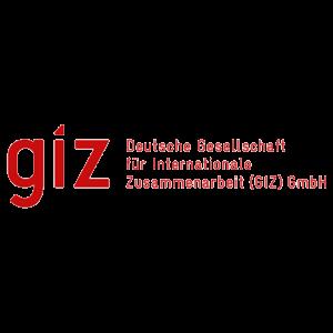 GIZ - 300 X 300