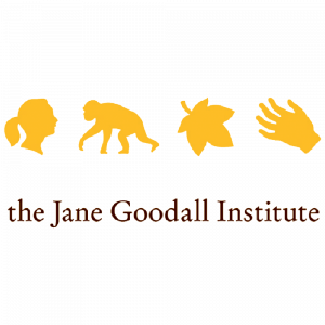 JANE GOODALL - 300 X 300