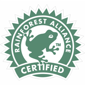 Rainforest - 300 x 300