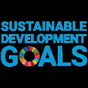 SDG - 300 X 300